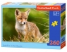 Puzzle 260: Little Fox on the Meadow