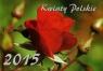 Kalendarz 2015 Kwiaty Polskie
