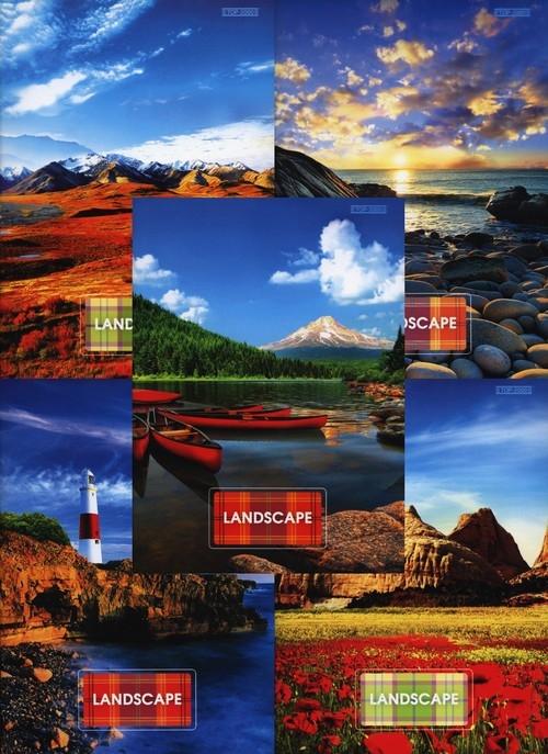Zeszyt A5 Top-2000 w kratkę 96 kartek Landscape mix