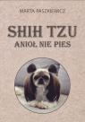 Shih tzu anioł nie pies Paszkiewicz Marta
