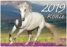 Kalendarz Konie 2019