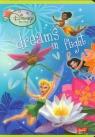 Zeszyt A5 Disney Wróżki w kratkę 16 kartek dreams in flight
