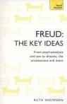 Freud The Key Ideas Snowden Ruth