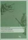 Passchendaele Kampania we Flandrii 1917