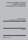 Prawo ochrony pracy - współczesność i perspektywy rozwoju Wyka Teresa, Mielczarek Marcin A.