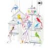 Kartki 3D - Bird Cages Asortyment ogólny / Obraz i Dźwięk