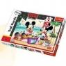 Puzzle maxi. Piknik na plaży. 24 elementy (14236)