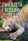 Zwierzęta i rośliny chronione w Polsce