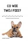 Co wie Twój pies? Poznaj sposób rozumienia świata przez psy Collins Sophie