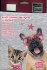 Kredki Jumbo ołówkowe Studio Pets trójkątne 12 kolorów (PEE-3001)
