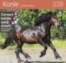 Kalendarz 2018 30x30 Konie HELMA