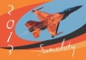 Kalendarz 2013 Samoloty