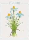 Karnet kwiaty akwarela Stokrotka 12x16,5 cm
