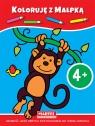 Koloruję z małpką