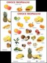 Plansza - Owoce tropikalne