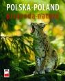 Polska przyroda Krzyściak-Kosińska Renata, Kosiński Marek