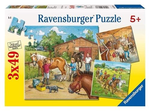 Puzzle Dzień w stadninie3x49 EL.