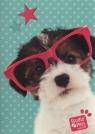 Zeszyt A5 Studio Pets w trzy linie 16 kartek Pies