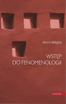 Wstęp do fenomenologii