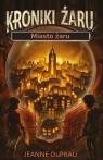Miasto żaru