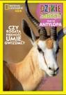 Dzikie Zwierzęta 20: Antylopa