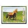 Blok rysunkowy A4/20K biały konie