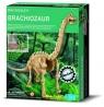 Dino szkielety Brachiosaurus (3237)