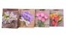 Torebka Lux210 gsm A4 26x32x10 Kwiaty set B