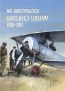 Na skrzydłach Wielkiej Wojny 1916-1917