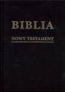 Biblia w zarysie. Nowy Testament płótno
