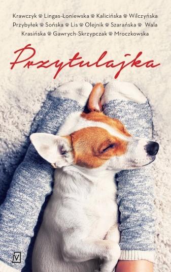 Przytulajka - pocket Agnieszka Krawczyk, Agnieszka Lingas-Łoniewska, Małgorzata Kalicińska, Karolina Wilczyńska, Agata Pr