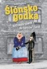 Ślonsko godka ilustrowany słownik dla Hanysów i Goroli Furgalińska Joanna