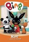Bing cz.2 Kot i inne przygody DVD