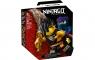 Lego Ninjago: Epicki zestaw bojowy - Cole kontra Wojownik-duch (71733)