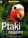 Ptaki ozdobne Gorazdowski Marcin Jan