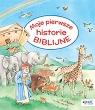 Moje pierwsze historie biblijne Dierks Hannelore (tekst); Szesny Susanne (ilustracje)