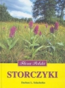 Storczyki Szlachetko Dariusz L.