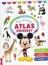 Disney Maluch Mój pierwszy atlas zwierząt