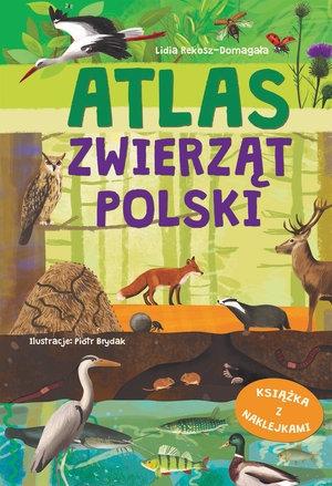 Atlas zwierząt Polski Lidia Rekosz-Domagała, Piotr Brydak (ilustr.)