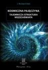 Kosmiczna pajęczyna Tajemnicza struktura Wszechświata