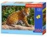 Puzzle Little Jaguar 260 elementów
