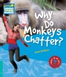 Why Do Monkeys Chatter? 5 Factbook