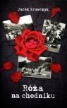 Róża na chodniku Krawczyk Jacek