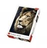 Puzzle Portret lwa 1500 (Uszkodzone opakowanie) (26139)