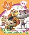 44 koty nr 1 Poznajmy się!
