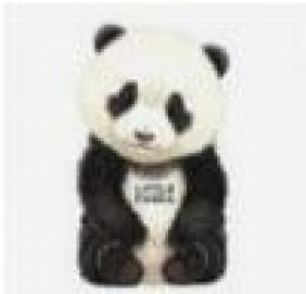 Little Panda Giovanni Caviezel