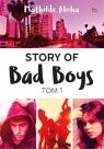 Story of Bad Boys Tom 1