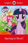 My Little Pony: Spring is Here! Ladybird