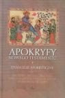 Apokryfy Nowego Testamentu Tom 1 Ewangelie apokryficzne Część 2