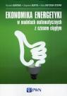 Ekonomika energetyki w modelach matematycznych z czasem ciągłym Bartnik Ryszard, Buryn Zbigniew, Hnydiuk-Stefan Anna